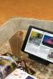 iPadMini-orizz_salotto_opt